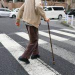 松戸市の交通事故発生状況